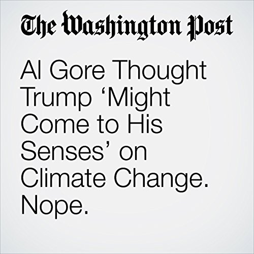Al Gore Thought Trump 'Might Come to His Senses' on Climate Change. Nope. copertina
