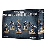 Games Workshop Adeptus Astartes Space Marine Sternguard Veteran Squad Warhammer 40,000