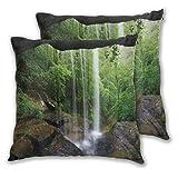 DAOPUDA Funda de Cojín Suave,Natural Cave Still Waterfall en el Bosque en el Paisaje del ecosistema del hábitat del Norte de Alabama,Funda de Almohada Cuadrado para Sofá Cama 50x50cm,Set de 2