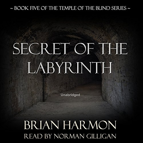 Secret of the Labyrinth audiobook cover art