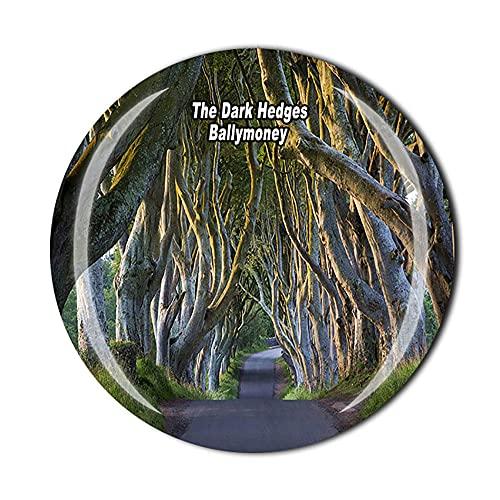 Imán para nevera con diseño de los setos oscuros de Ballymoney de Irlanda del Norte en 3D para recuerdo de cristal, para viajes, colección de recuerdos, regalo para el hogar y la cocina