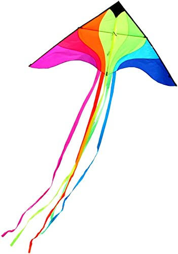 Bunter Drachen, Strand-kreativer Größer langer Schwanz-Erwachsen-Drachen-Reise-Brise einfach, den Drachen zu fliegen, 2  4M (Größe   2  4M)