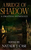A Bridge Of Shadow: Large Print Hardcover Edition