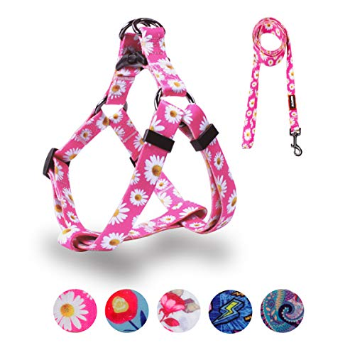 QQPETS Dog Harness Leash Set, Adjustable Heavy Duty No Pull Halter Harnesses for Small Medium Breed Dogs, Back Clip, Anti-Twist, Perfect for Walking