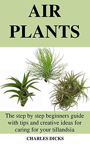 AIR PLANTS: The step by step beginners guide with tips and creative ideas for caring for your tillandsia (English Edition)