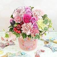 母の日ギフト [イイハナ・ドットコム] アレンジメント 「Thanks Mom~Strawberry~」 フラワーギフト