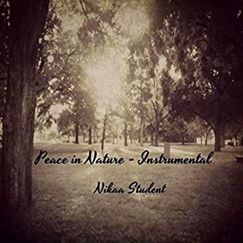 Peace In Nature (Instrumental)