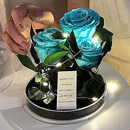 HYDDG Caja de Regalo Secret Garden Caja de Regalo Transparente Eternal Rose para Padres Regalo de cumpleaños del día de San Valentín