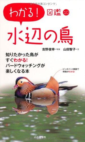 わかる! 図鑑10 水辺の鳥の詳細を見る
