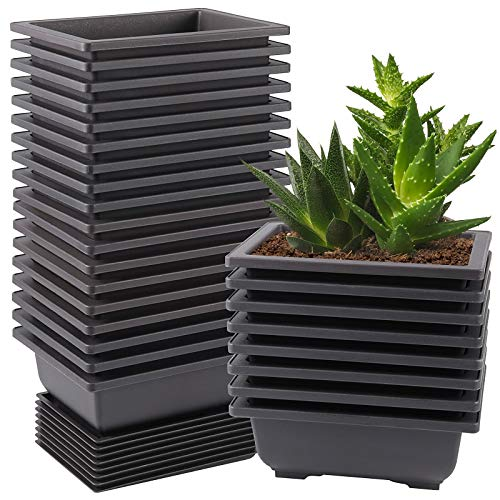ZEONHEI 15 PCS 6.5 Inch Bonsai Training Pots, Rectangular Plastic Growing Pots, Flower Succulent Pots Container with 15 PCS Humidity Trays for Garden, Yard, Office, Porch, Balcony, Home Decoration