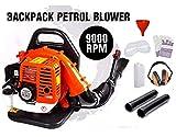 Dealourus Mochila de gasolina de 65 cc soplador de hojas, extremadamente potente, 210 mph, ligera con correas de apoyo acolchadas nuevas y mejoradas para máxima comodidad.
