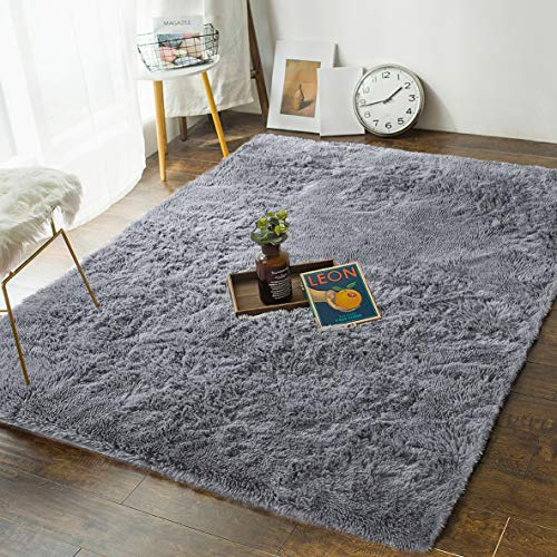 Andecor Soft Fluffy Bedroom Rugs - 4 x 6 Feet Indoor Shaggy Plush Area Rug for Boys Girls Kids College Dorm Living Room Home Decor Floor Carpet, Grey