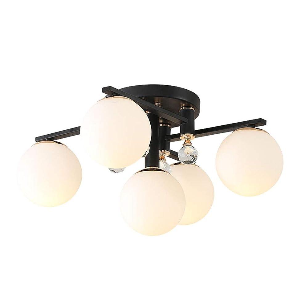 経歴慣らす報奨金123 シャンデリアシーリングライトペンダントライトランプ照明ぶら下げledランプシェード備品カバー電球ルーム寝室装飾クリエイティブシンプル読みます 456 (Color : B)