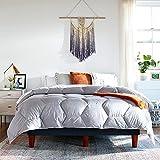 Layla Down Alternative Comforter   Oeko-Tex Certified Comforter   All Season Duvet   Unique Hexagon Stitch   Premium Luxury Cotton Bird Friendly Material (Gray, Full/Queen)