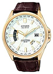 Citizen Men's CB0013-04A World Perpetual A-T Watch Reviews