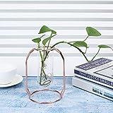 Tubería de vidrio de acero inoxidable resistente a la corrosión jarrones para plantas maceta para Hydrocotyle vulgaris para Scindapsus(Oro rosa)