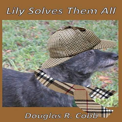 Lily Solves Them All Titelbild
