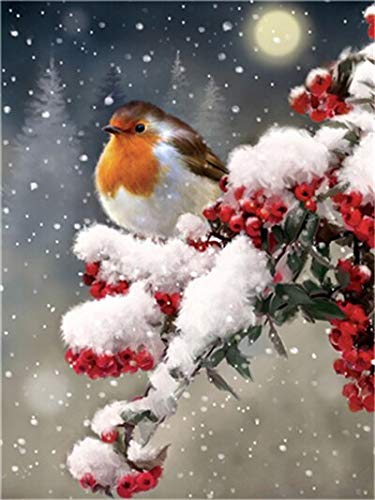 5D DIY Diamond Painting Bird Snow Tree Cross Stitch Kit Full Drill Embroidery Mosaic Winter Picture of Rhinestones Decor A9 40x50cm