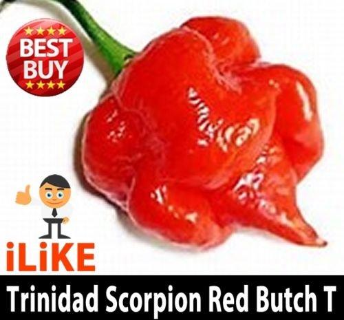 Trinidad Scorpion Butch T 10 Semillas mínimo. Uno de los mundos más calientes.