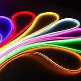 LED Neon Light 5M LED Flexible Strip Light SMD 2835 LED Neon Flex Tube IP65 Waterproof Rope String Lamp, Multi Color Select for Home DIY Holiday Festival Decoration EU Power Plug