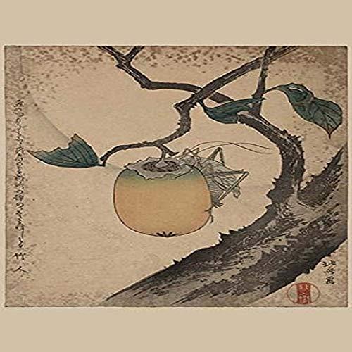 Buyenlarge 0-587-23588-8-G1827 Grashüpfer Essen Persimmon. Giclee Kunstdruck 45,7 x 68,6 cm