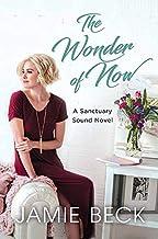 The Wonder of Now: A Sanctuary Sound Novel (Center Point Large Print: Sanctuary Sound)