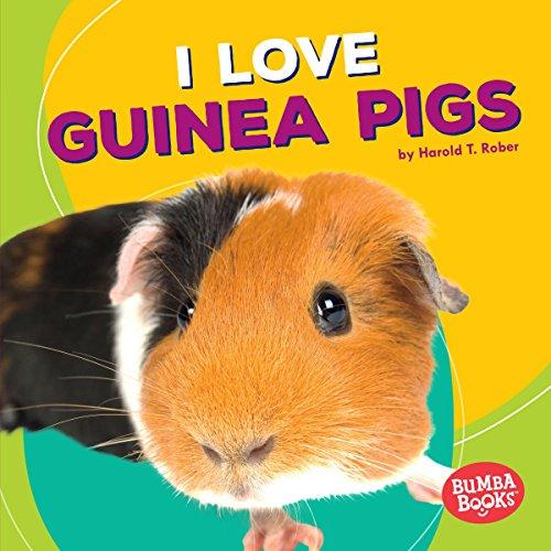 I Love Guinea Pigs copertina