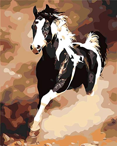 5D Square Diamond Painting for Adults Kids by Number Kits,Black Horse Running Full Drill Cross Stitch Rhinestone Embroidery Paint by Numbers Art Craft Relaxation Home Wall Decor 40 X 50 cm
