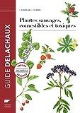 Plantes sauvages comestibles et toxiques