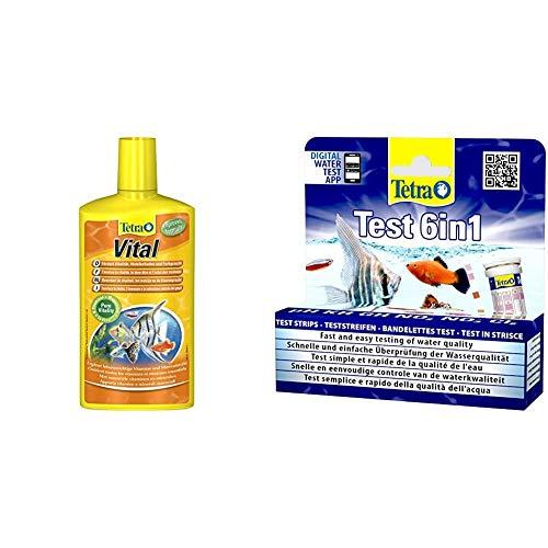 TetraVital Wasserpflege, zur Förderung von Vitalität, Wohlempfinden und Farbenpracht von Zierfischen, 500 ml & Test 6in1 Wassertest, schnelle und einfache Überprüfung der Wasserqualität, 1 Dose