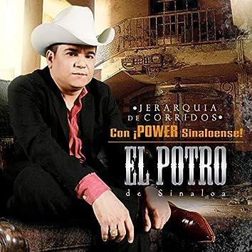 Jerarquia de Corridos con Power Sinaloense! (Edited Version)