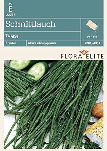 Flora Elite 22238 Schnittlauch Twiggy (Schnittlauchsamen) [MHD 06/2020]