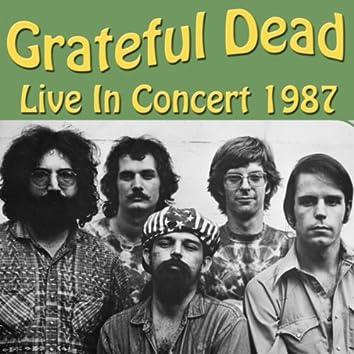 Grateful Dead Live In Concert 1987
