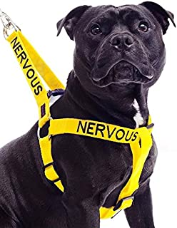 nervous dog warning vest