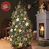 1 x Echter lebender kleiner Weihnachtsbaum (Picea/Fichte) Der Baum für jeden Raum/Indoor und Outdoor (5 Liter Topf) 70 bis 80 cm