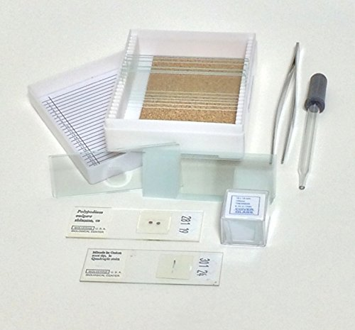 Benz Microscope Basic Glass Slide Kit, 20 pc Set
