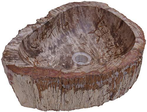 Guru-Shop Massives Fossiles Holz Aufsatz-Waschbecken, Waschschale, Naturstein Handwaschbecken - Modell 1, Beige, 14x46x36 cm, Waschtische, Waschbecken & Badewannen