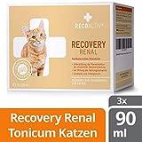 RECOACTIV RECOVERY Renal für Katzen 3 x 90 ml - Hochkalorisches Diät Alleinfuttermittel f. Katzen mit Nierenfunktionsstörungen, in der Rekonvaleszenz und zur Gewichtszunahme, bei Nahrungsverweigerung
