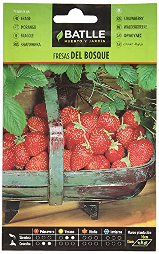 Semillas Hortícolas - Fresas del Bosque - Batlle