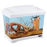 Ferplast 65010011 Aquarium CAPRI JUNIOR, Maße: 41 x 26,5 x 34 cm, 21 Liter, weiss