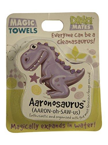 John Hinde DinoMates Magic Towel, Aaron