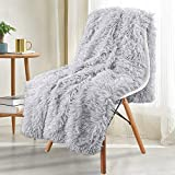 Noahas Super Soft Shaggy Longfur Throw Blanket - Snuggly Fuzzy Faux Fur Blanket - Lightweight Warm Cozy Plush Sherpa Fleece Blanket - for Couch Sofa Bed Photo Props, Light Grey, 60x80 inch