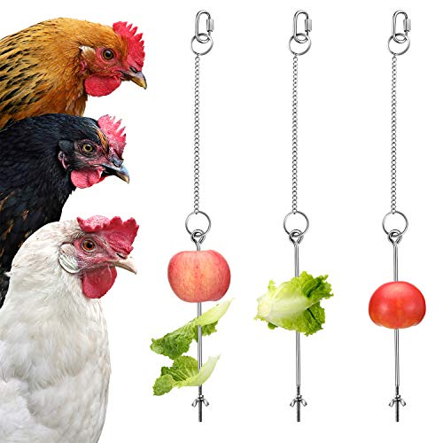 3 Pieces Stainless Steel Hanging Feeder Chain Toy Veggies Skewer Fruit Vegetable Holder with Chain for Hens Pet Chicken Bird Parrot (Medium)