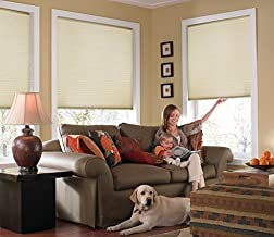 Windowsandgarden Custom Cordless Single Cell Shades, 24W x 48H, Daylight, Light Filtering 21-72 Inches Wide