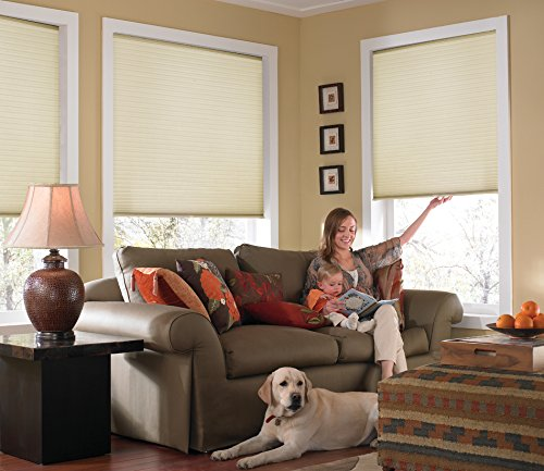 Windowsandgarden Custom Cordless Single Cell Shades, 24W x 40H, Daylight, Any Size 21-72 Wide and 24-72 High