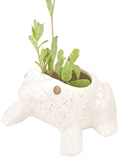 Best small flower pots online india Reviews