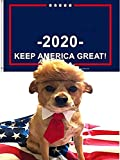 5 in 1 Pet Costume Dog Wig Sets - Dog Clothes with Collar and Tie Head Wear + Flag Keep America Great + USA Flag, Support for President Political Campaign
