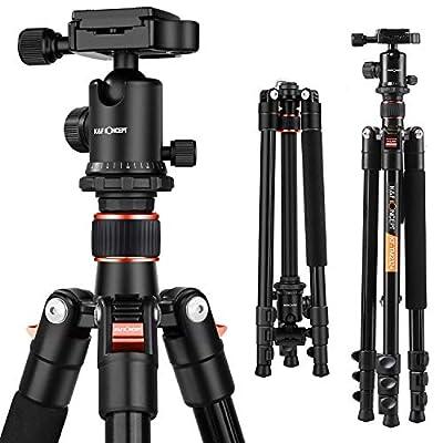 TM2324 Camera Tripod