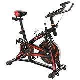 BTM(ビーティーエム) スピンバイク フィットネス エクササイズバイク MS036810 本格トレーニング (ブラック&レッド)