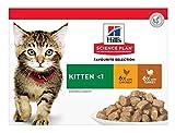 Hill's Feline Kitten Multipack Chicken & Turkey Comida para Gatos - Paquete de 12 x 85 gr - Total: 1020 gr